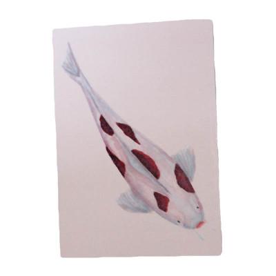 Koi Carp - Ichi