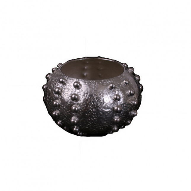 Beaded Urchin